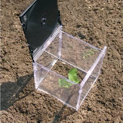 cd-case-garden-cloche.jpg - 56kB