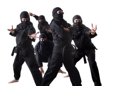 ninja7.jpg - 93kB